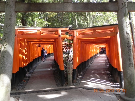 Fushimi Inari -1000 torii gates 鸟居