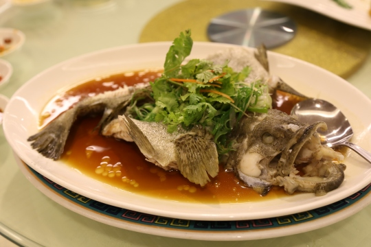 garoupa HK steamed 港蒸