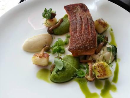 aussie ocean trout, gnocchi, pea puree, shimeji, garlic emulsion