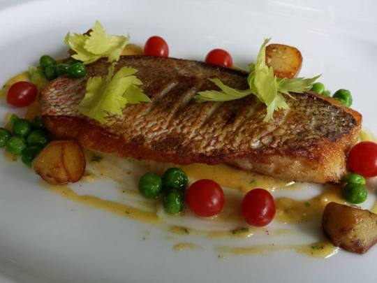 panfried red snapper, tomberry tomatoes