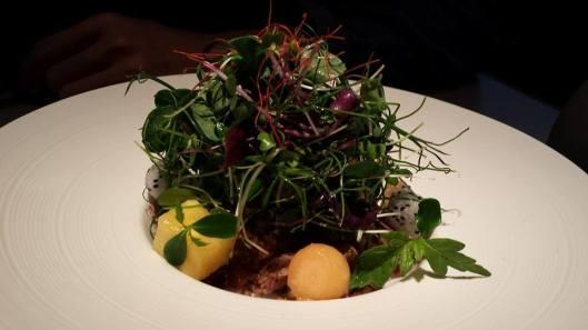 #1 crispy duck salad - pulled duck with crispy skin, melon, dragon fruits & salad