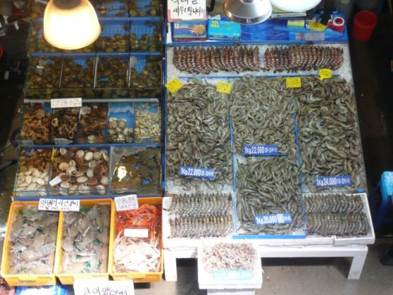 noryangjin fisheries wholesale market