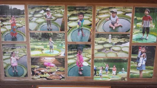 children on water lilies Umi-Jigoku Beppu