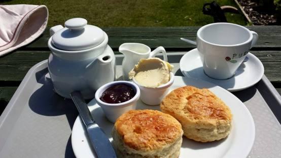 £5.25 cream tea porthgwarra cove cafe