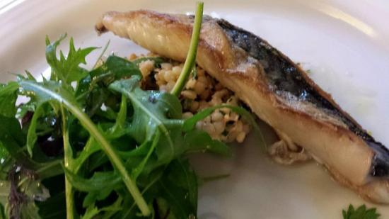 pan-fried mackerel with crab cous cous