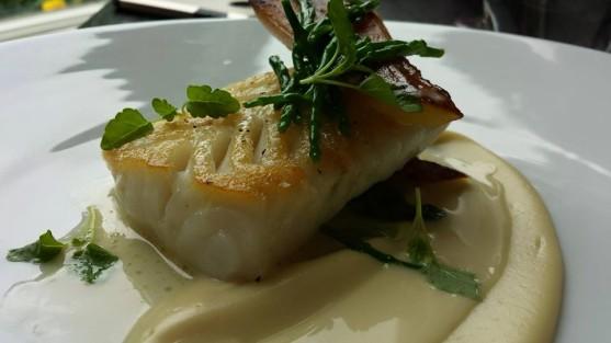 pollack - cod like flaky texture