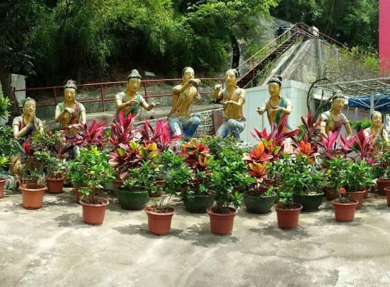 10000 budhhas monastery man fat sze 万佛寺