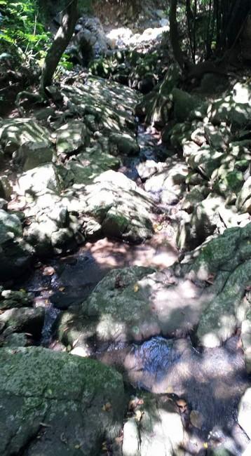 brook at kwun yam temple 观音古庙