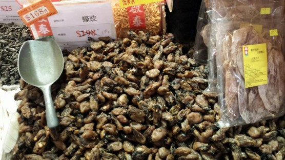 dried oysters HK$168:斤 (600g)= S$50:kg