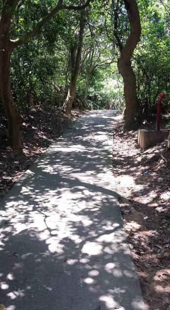 path going downto suk ku wan