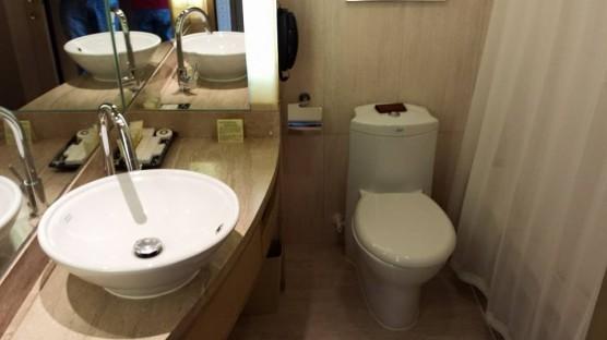 royal park hotel toilet