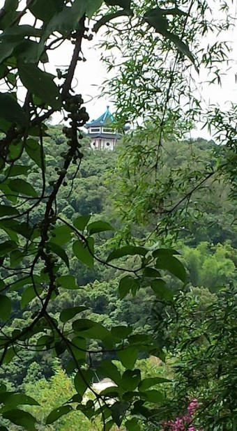 view from 10000 budhhas monastery man fat sze 万佛寺