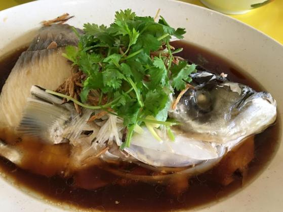 song fish head hk steamed 港蒸松鱼头