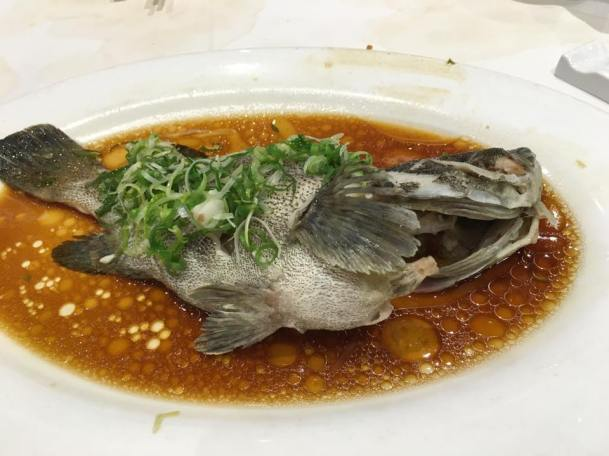 HK$78 steamed live tiger garoupa promotion..a large fish 800-900g