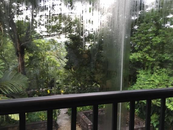 looking out of the verandah