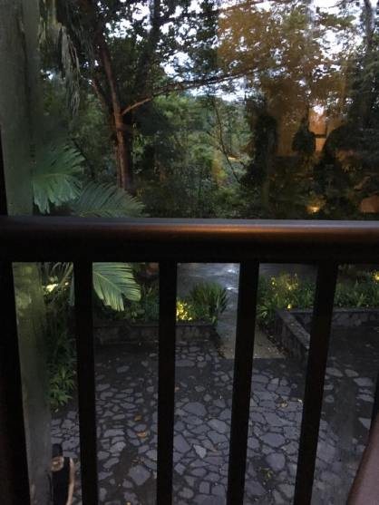 looking out of the verandah3
