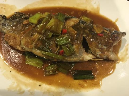 braised mandarin fish 红烧桂鱼