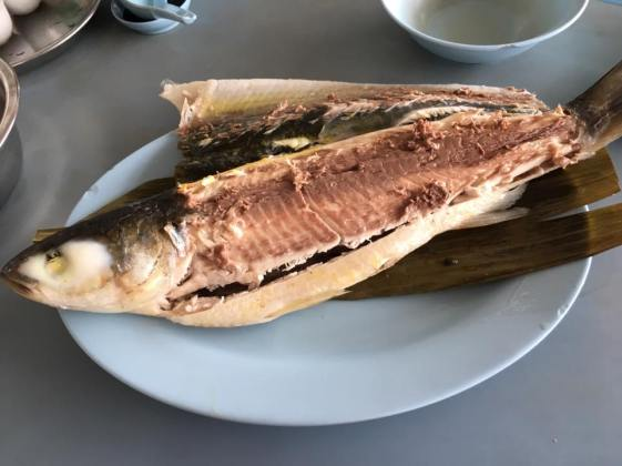 chilled mullet 冻乌鱼=S$17
