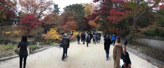 Day 1 - biwon秘苑secret gardens