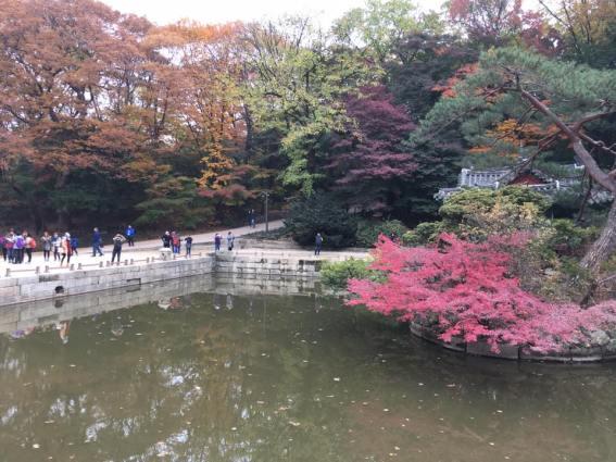 Day 1 - biwon密苑secret gardens