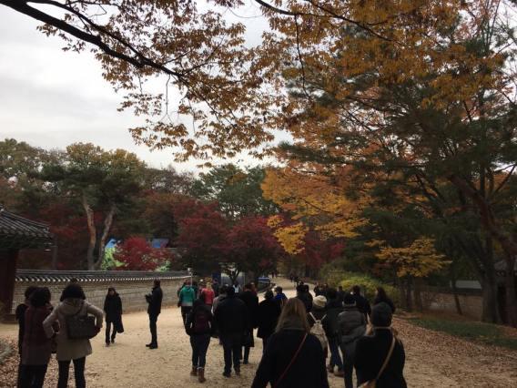 Day 1 - biwon秘苑ecret gardens