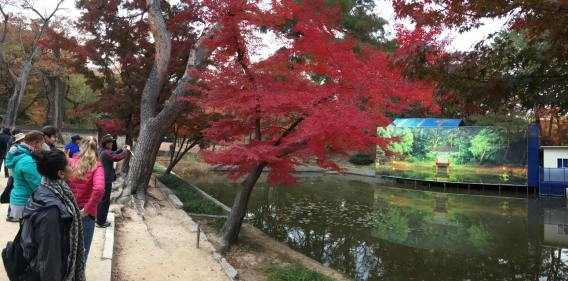 Day 1 - aeryeonji pond, biwon秘苑secret gardens