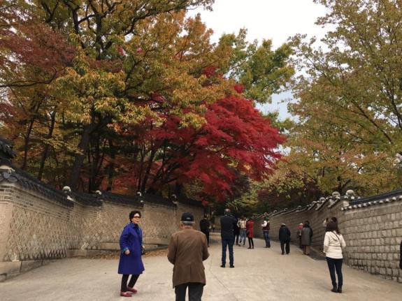 Day 1 biwon秘苑secret gardens