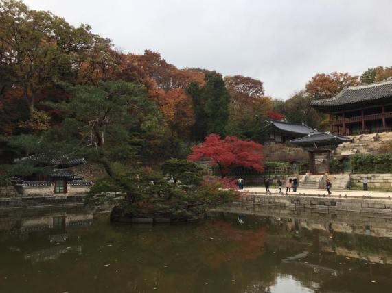 Day 1 - Buyongji Pond (부용지) area: the lotus flower pond & Juhamnu Pavilion 주합루