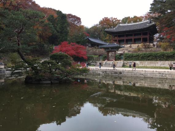 Day 1 - Buyongji Pond (부용지) area: the lotus flower pond & Juhamnu Pavilion 주합루