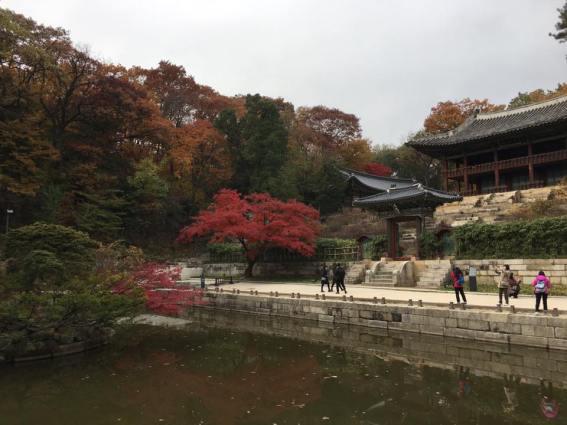 Day 1 - Buyongji Pond (부용지) area: Juhamnu Pavilion 주합루
