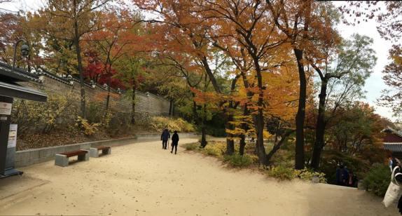 Day 1 - Changgyeonggung eastern palace 창경궁 昌慶宮