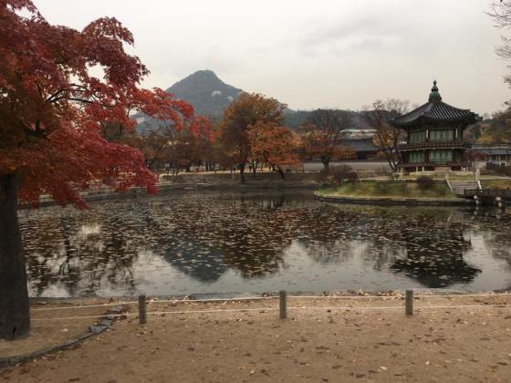 Day 1 - beautiful Hyangwon-jeong, Gueongbokgung 경복궁 景福宫