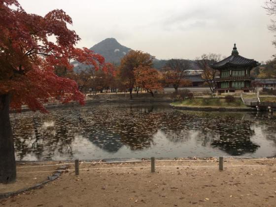 Day 1 - beautiful Hyangwon-jeong, Gueongbokgung 경복궁 景福宫