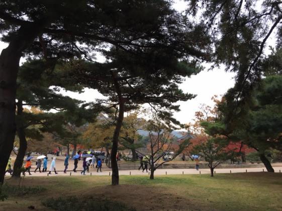 Day 1 - Gueongbokgung 경복궁 景福宫