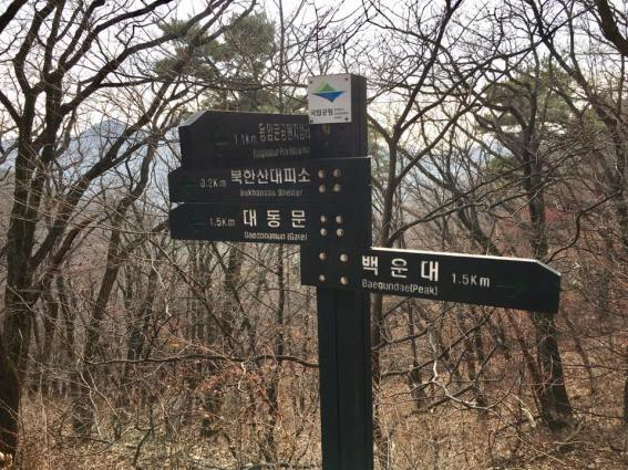 coming-down-1-5km-to-daedongmun-gate