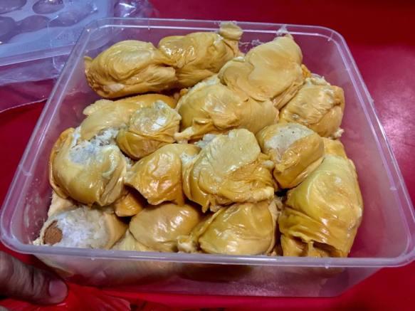 D13 durians from sin kian choon