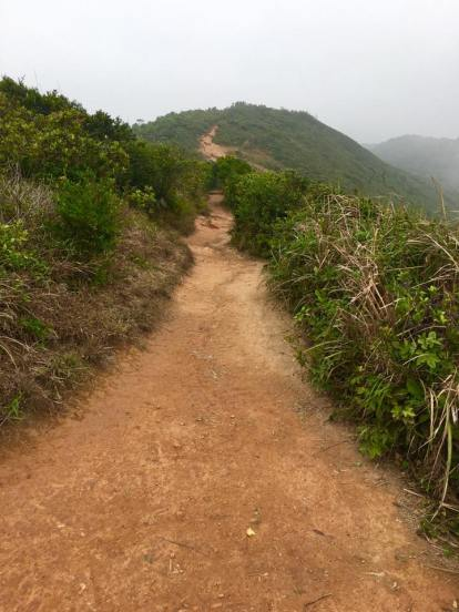 dragon's back trail - more ups & downs