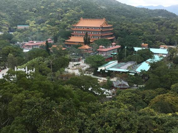 view of po lin monastry from big buddha